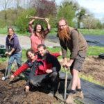 5 reasons to be a member of School Farm CSA!